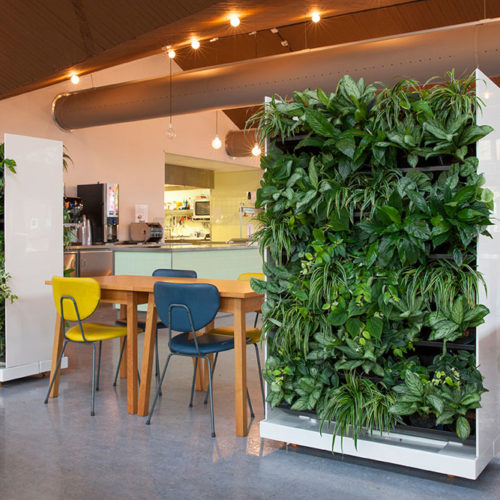 NEXTGEN - Living-Wall-Room-Divider-49